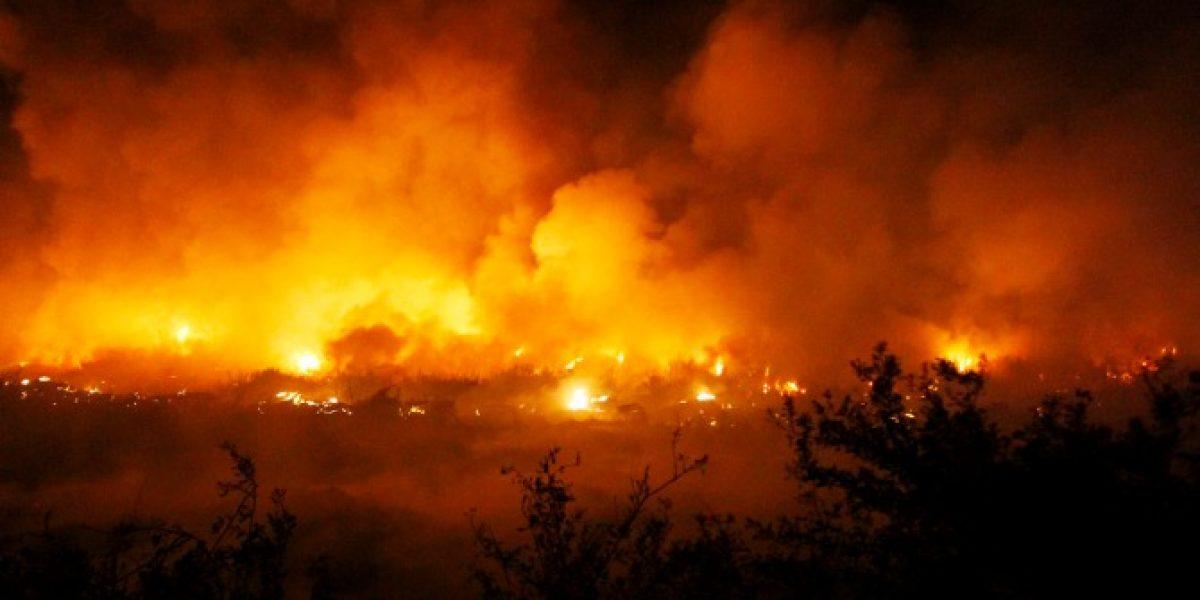 Incendio destruyó por completo las instalaciones de Fernández Vial