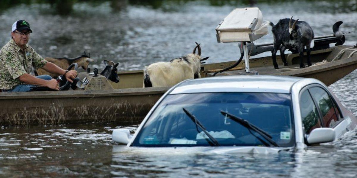 Al menos once muertos y 40.000 casas afectadas por inundaciones en Estados Unidos