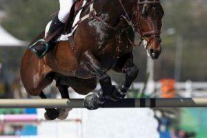 Su padre lo convenció de no vender a su caballo Foto:Getty Images. Imagen Por: