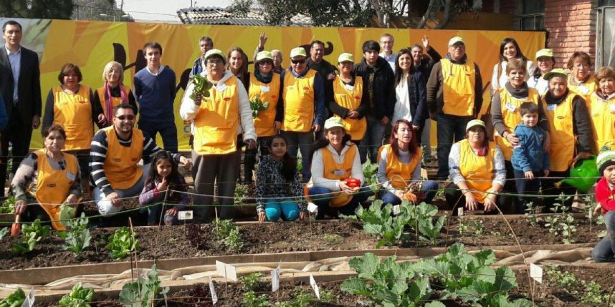 Más de 90 familias se benefician de huertos familiares en la Región Metropolitana