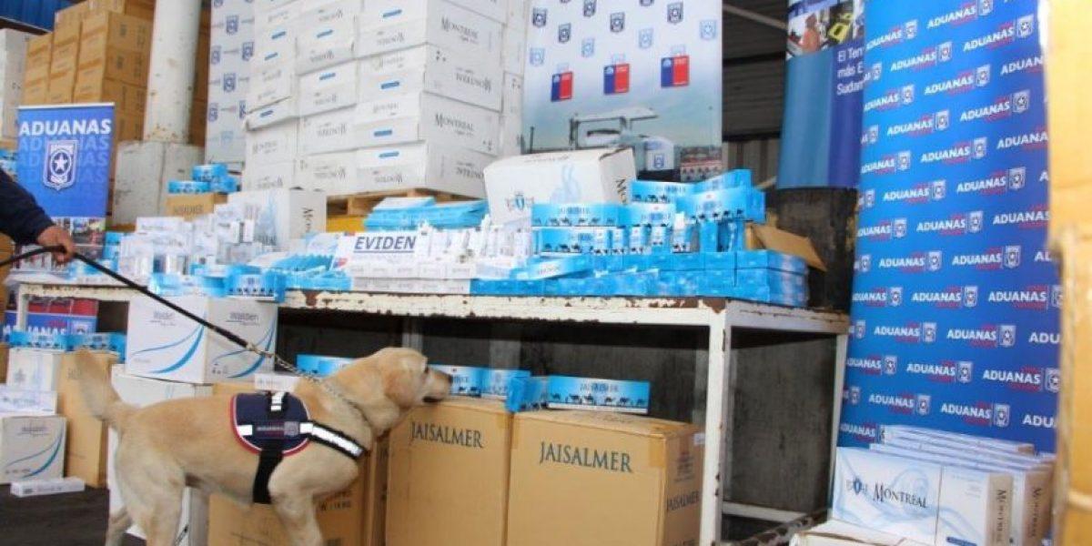 Dos millones de dólares en cigarros de contrabando detectó perro de Aduanas