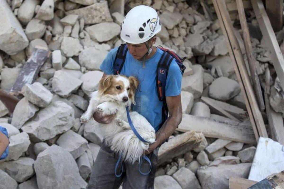 """Pasadas más de 24 horas del sismo de 6,2, los equipos de socorro seguían con una carrera sin cuartel contra el reloj en busca de eventuales sobrevivientes atrapados cuando dormían bajo toneladas de escombros.""""Es posible que el número de víctimas crezca"""", había advertido por la tarde el jefe de gobierno italiano, Foto:Efe. Imagen Por:"""