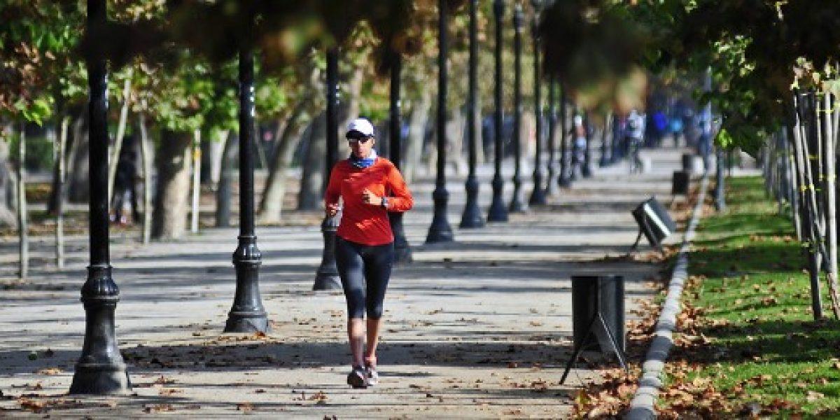 Cómo la actividad física puede potenciar la productividad y el clima laboral