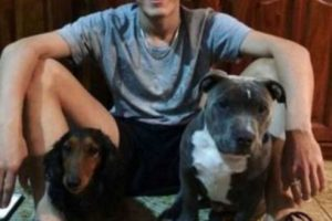 Marino con sus mascotas. Foto:Facebook. Imagen Por:
