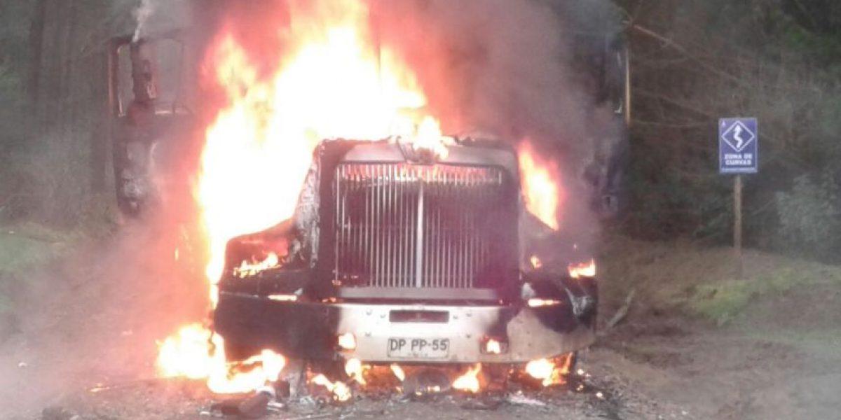Camión forestal fue destruido por atentado incendiario en La Araucanía