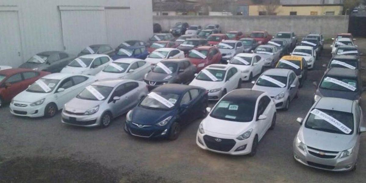 En total suman un millón de dólares: Carabineros recupera 85 autos robados en portonazos