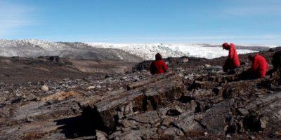 Hallazgo de restos fósiles cambiaría toda la teoría sobre el origen de la vida en la Tierra