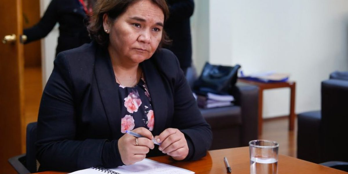 Sólo dos carillas escritas: la curiosa tesis de grado de la directora del Sename Solange Huerta