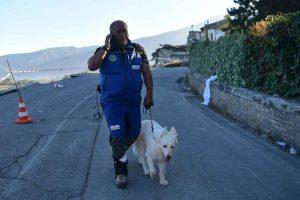 Los perros han sido de gran ayuda en los rescates Foto:Getty Images. Imagen Por: