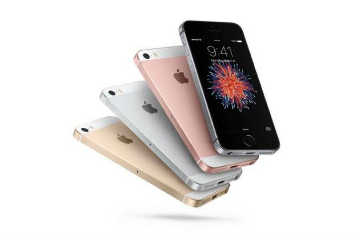 El iPhone SE es el celular más reciente de Apple. Foto:Apple. Imagen Por: