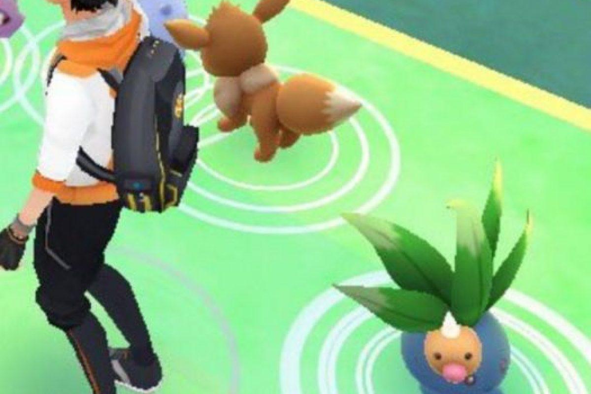Niantic/Nintendo Foto:Weedle parece indefenso. Imagen Por: