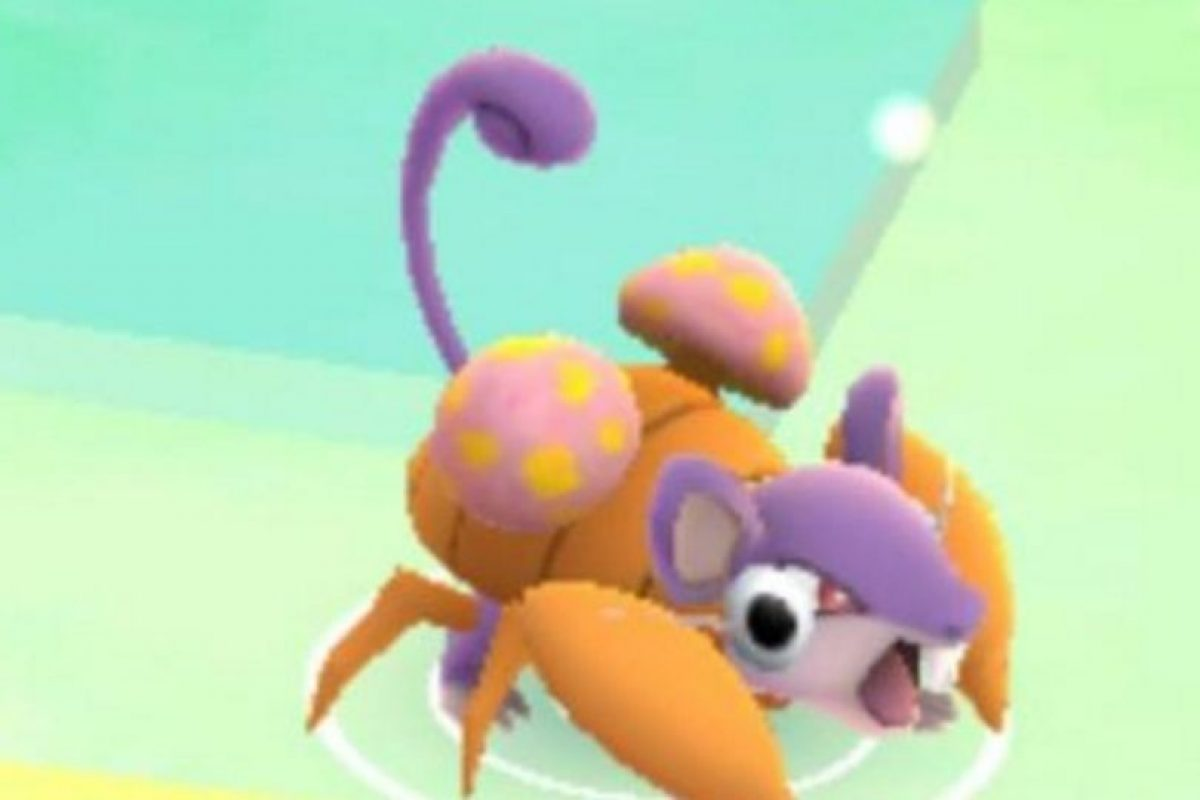 Niantic/Nintendo Foto:De nuevo Rattata. Imagen Por: