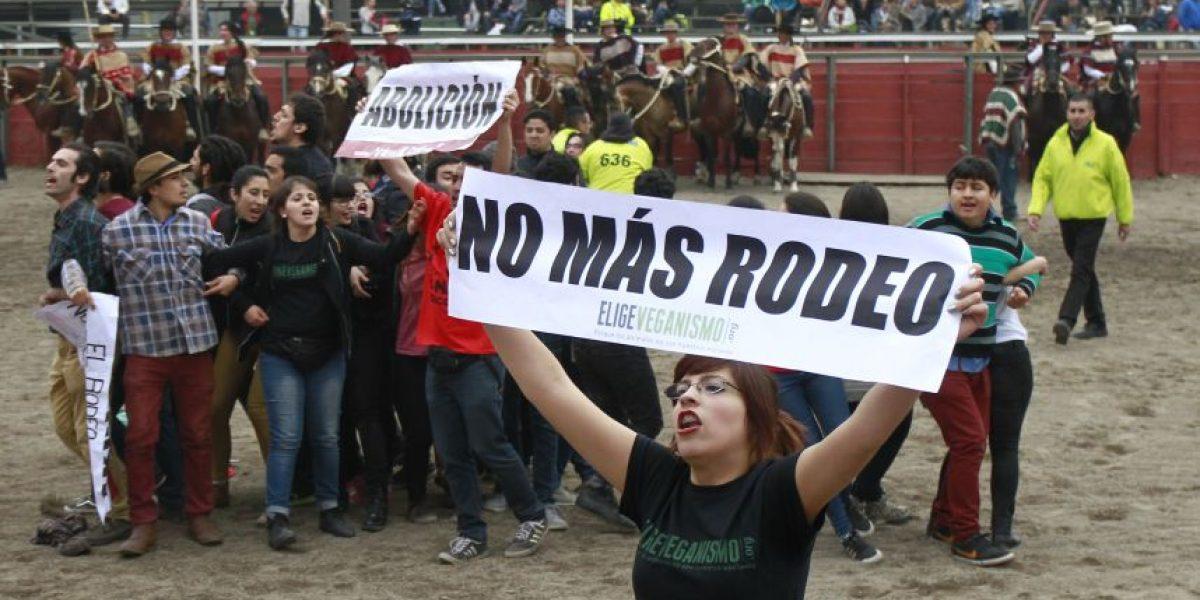 Candidata a Concejal por Santiago detenida tras protesta contra el rodeo en Parque Alberto Hurtado