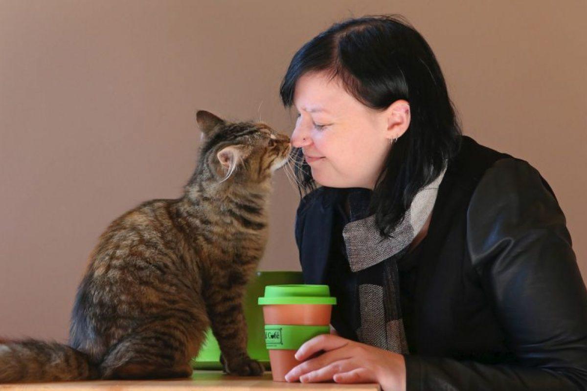 Getty Images Foto:1. ¿Por qué quieren compartir su vida con un animal?. Imagen Por:
