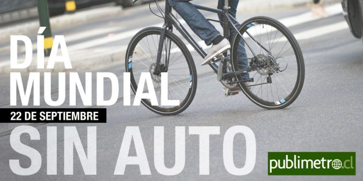 Infografía: Día Mundial sin Auto