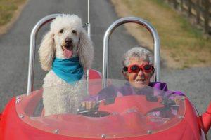 Norma Bauerschmidt falleció a los 91 años Foto:Facebook.com/DrivingMissNorma. Imagen Por: