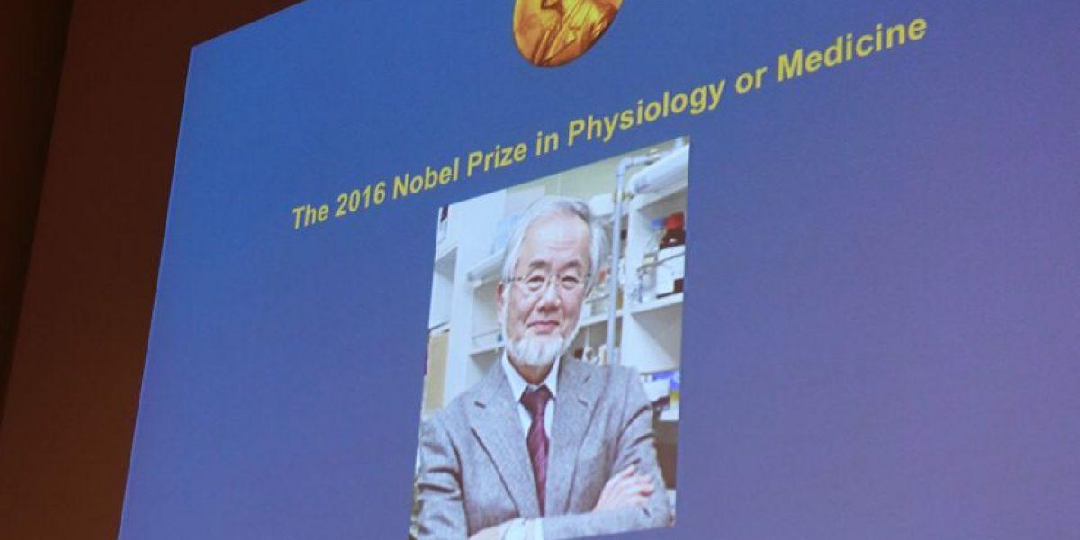 Biólogo japonés gana Nobel de Medicina por sus investigaciones sobre la autofagia