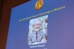 El diploma y la medalla Nobel van acompañados por una recompensa de ocho millones de coronas suecas (unos 934.000 dólares). Foto:Afp. Imagen Por:
