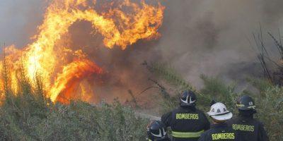 Onemi declara alerta roja en Paine por incendio forestal