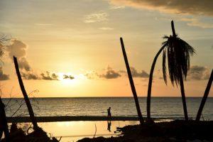 """Así quedó la Haití tras el paso de """"Matthew"""" Foto:AFP. Imagen Por:"""