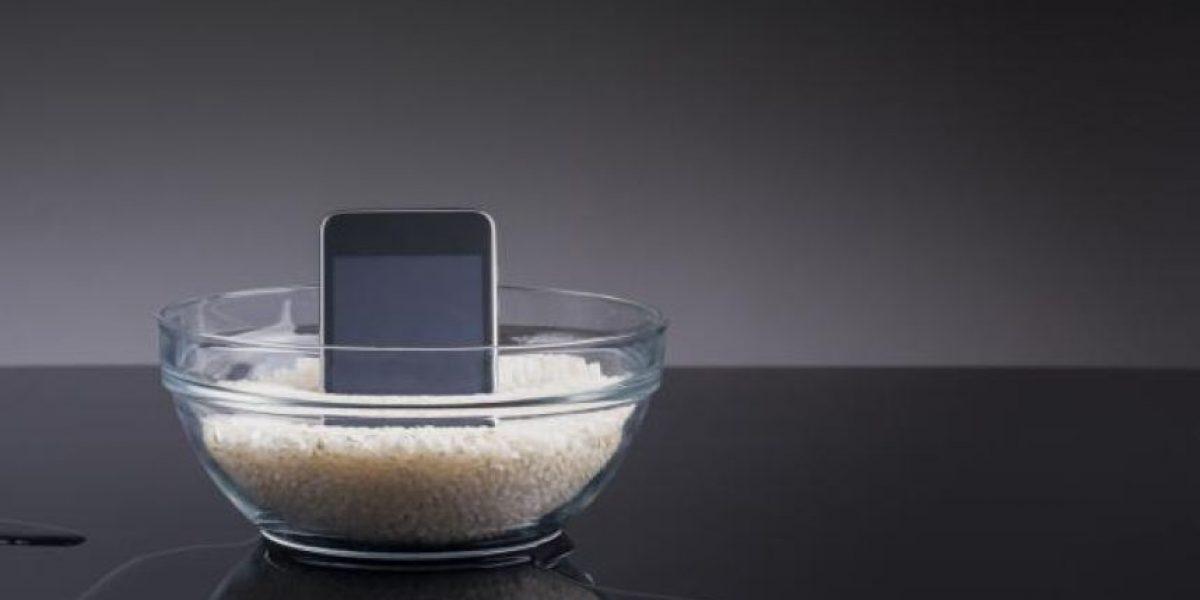 ¿Qué hacer si tu celular se cae al agua? revisa estos cuatro consejos
