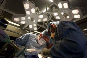 ¿Cómo ser donador de órganos? Foto:Getty Images. Imagen Por:
