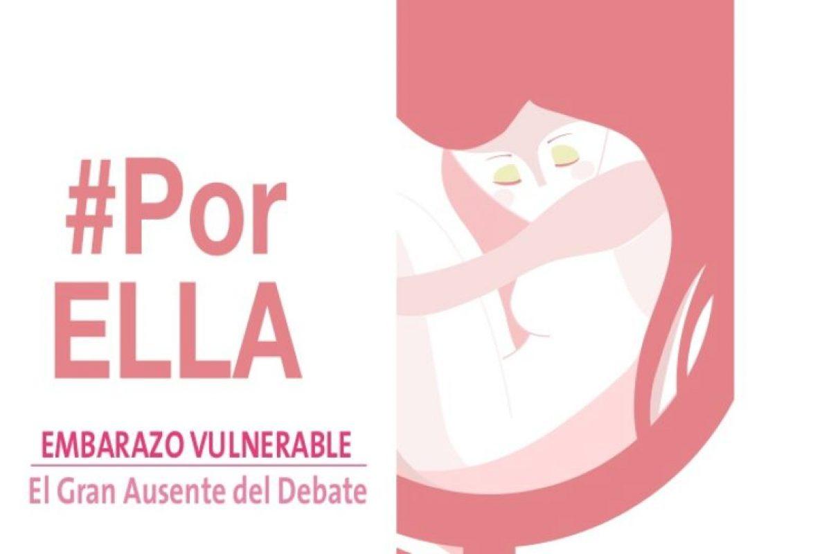"""La ONG Idea País, de la cual Diego Schalper fue director ejecutivo, presentó hace un tiempo el estudio """"Embarazo vulnerable: el gran ausente del debate"""", donde planteaban la creación de una red de apoyo a la maternidad. Foto:Gentileza. Imagen Por:"""