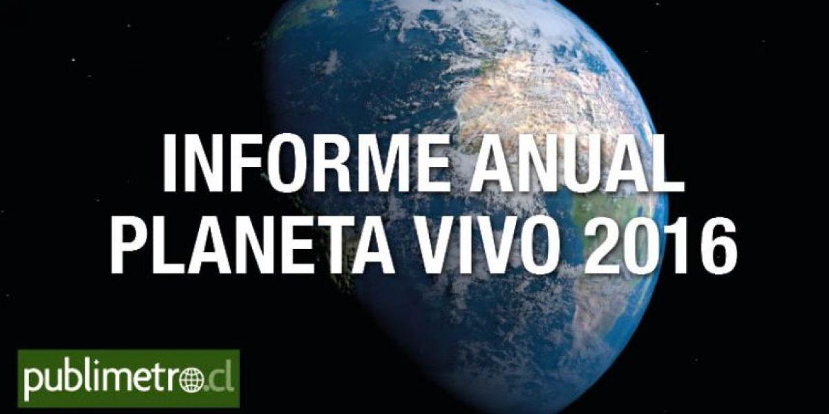 Infografía: informe anual planeta vivo 2016