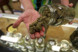 Casi 60 millones de estadounidenses podrían tener acceso a marihuana legal Foto:Getty Images. Imagen Por: