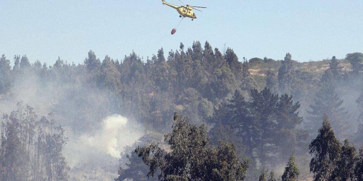 Declaran alerta roja en Santo Domingo y Zapallar por incendios forestales