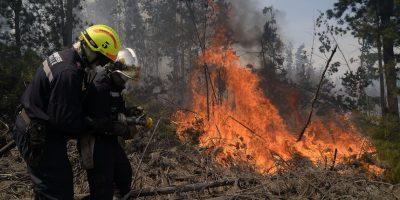 Explosivo aumento de los incendios forestales en Chile: cifra alcanza los 440 en últimos cuatro meses