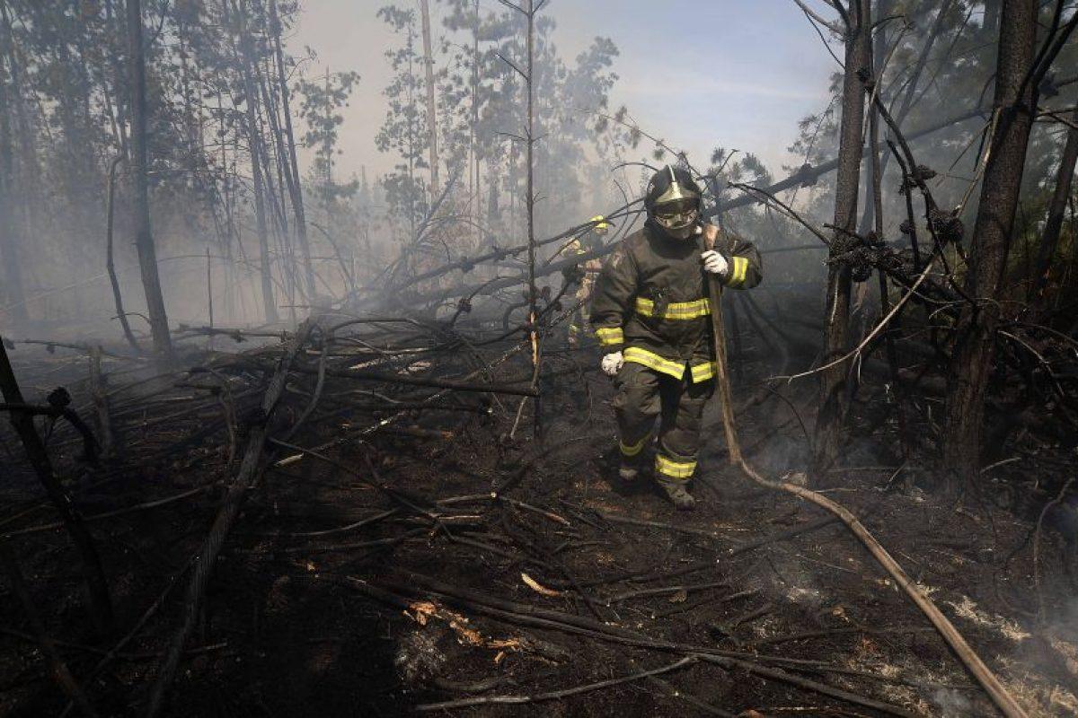 A nivel regional, desde el 1 de julio a la fecha, Valparaíso es la más afectada con 151 siniestros, seguida más atrás por Biobío, con 78, y la Región Metropolitana con 62 incendios. Foto:Agencia UNO. Imagen Por: