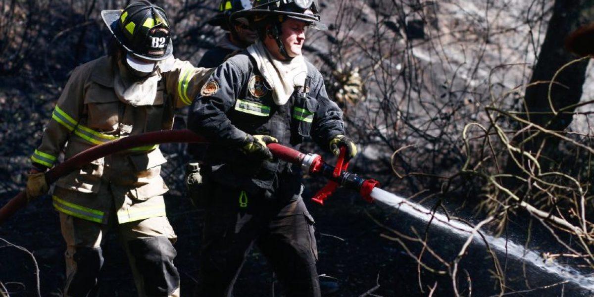 Alerta roja en Viña del Mar por incendio forestal