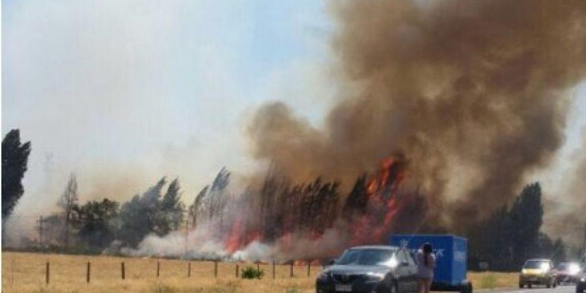 Se declara alerta roja por incendio en comuna de Lo Barnechea