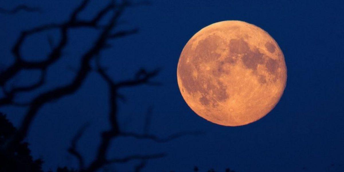 Ocho curiosidades sobre la superluna más grande en los últimos 70 años
