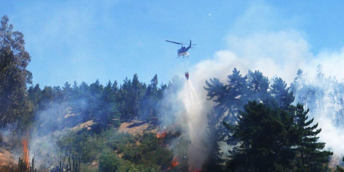 Conaf combate 11 incendios forestales simultáneos en todo país