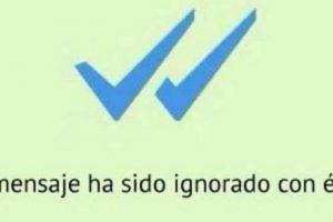 Es lo peor que nos puede pasar en los mensajeros como WhatsApp. El corazón se nos rompe cuando enviamos un mensaje y sólo aparecen esas dos palomas azules. Foto:Facebook. Imagen Por:
