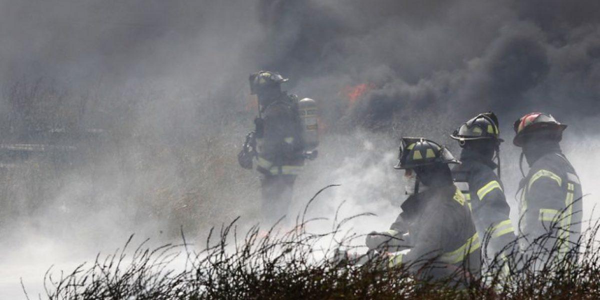 Humo cubrió la capital y 4 focos de incendios forestales siguen activos en la Región Metropolitana
