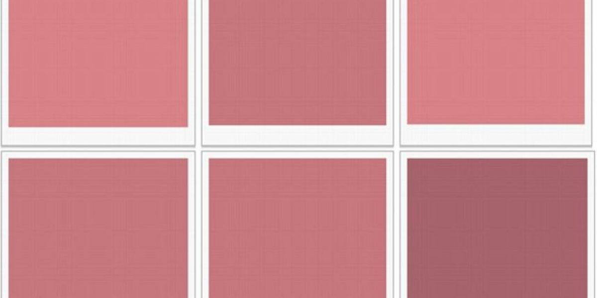 """¿Tienes la """"visión superior de colores""""? Averígualo en este test"""