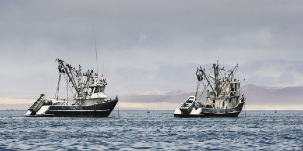 FAO pide a Latinoamérica que blinde sus puertos para combatir la pesca ilegal