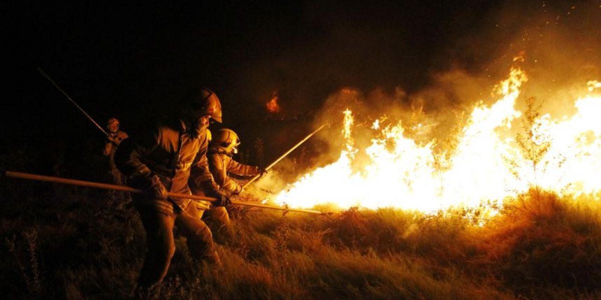 Incendio causa desastre ecológico en santuario de Quebrada de la Plata