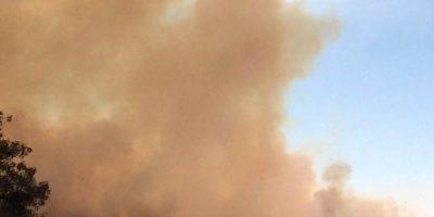 Alerta roja por incendios forestales en la zona centro-norte del país