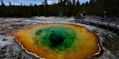 Cuerpo de joven se disolvió tras caer en aguas termales ácidas del Parque Yellowstone