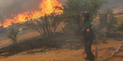 Balance de Onemi: 18 incendios forestales activos en cuatro regiones del país