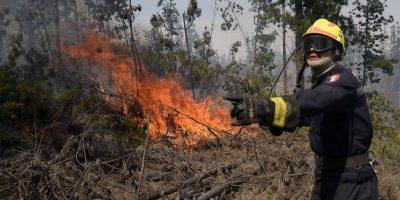 Región Metropolitana ha perdido 14 mil hectáreas producto de los incendios forestales esta temporada