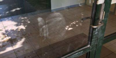Policía australiana busca a ladrón que dejó las huellas de sus nalgas en el lugar del crimen