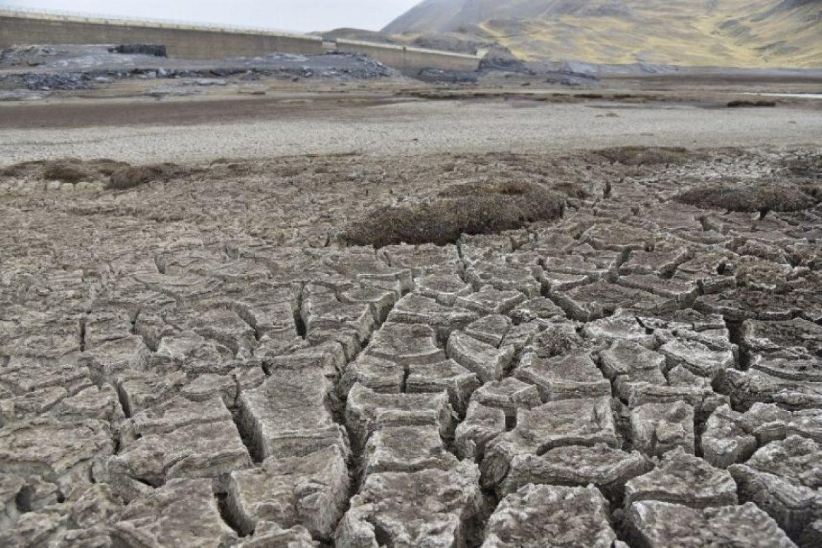 Se trata de la peor sequía en 25 años Foto:AFP. Imagen Por: