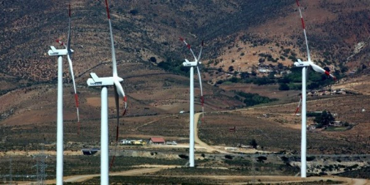 Anuncian licitación de casi 8 mil hectáreas de terrenos fiscales para proyectos de energía eólica
