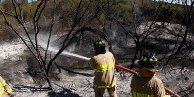 Declaran alerta temprana preventiva en cuatro regiones del país ante incendios forestales