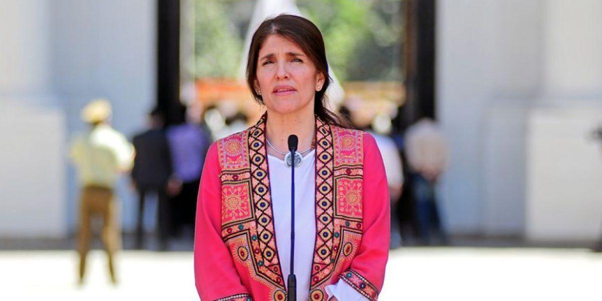 """Gobierno espera contar con los votos para aprobar la gratuidad: """"Estamos esperanzados"""""""